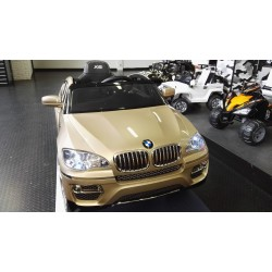 BMW X6 CHAMPAGNE